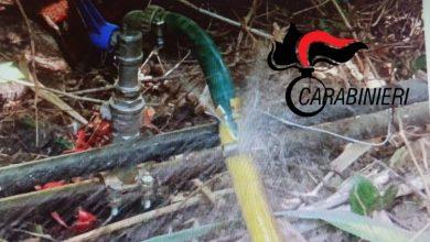 Photo of Caltanissetta, sorpreso a rubare l'acqua destinata all'irrigazione del verde pubblico: denunciato