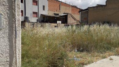 Photo of Settefarine. Terreni abbandonati un girone infernale tra le case.